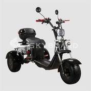 CityCoco SKYBOARD TRIKE BR40-3000 PRO