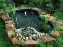 Водоемы - пруды, пленка