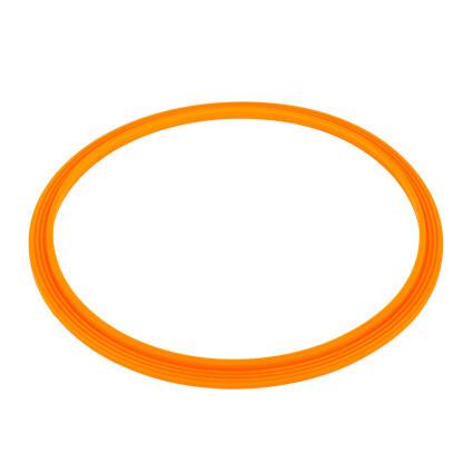 Уплотнительное кольцо AquaViva прожектора LED/UL-P100 2021004