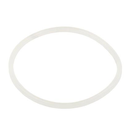 Уплотнительное кольцо AquaViva хлоратора SSC 2021044