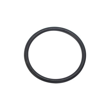 Уплотнительное кольцо Hayward (SX0220Z2)