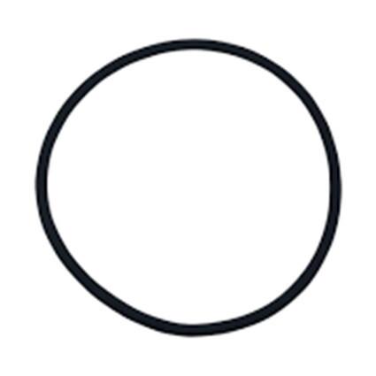 Уплотнительное кольцо для ячейки хлоратора Hayward (GLX-UN-ORINGE)