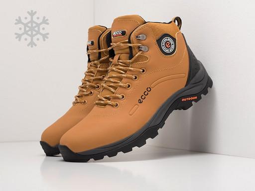 Ботинки Ecco (20767)