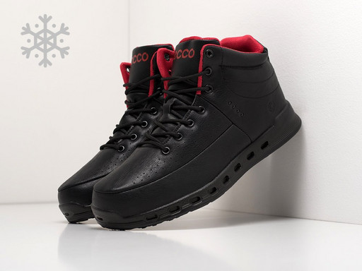 Ботинки Ecco (21049)