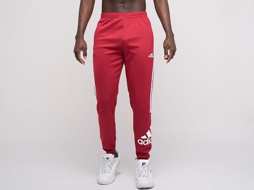 Брюки спортивные Adidas (22418)