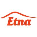 Этна - дверцы для печей и каминов