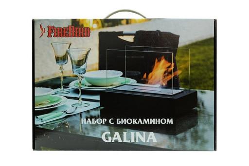 Набор с биокамином GALINA, биотопливом (1.5л.), зажигалкой