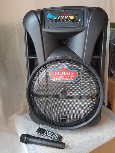 Аккумуляторная акустическая система FUHAO FH-C15 USB/FM/Bluetooth