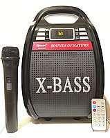 Портативная колонка с Микрофоном Golon RX 810/820 BT