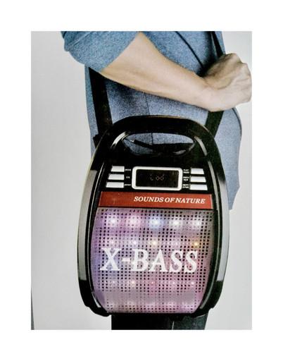 Радио RX 810 BT bluetooth,Портативная акустическая система RX-810BT,Колонка с микрофоном USB-FM!Опт